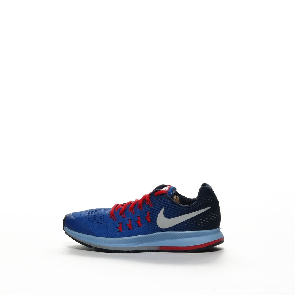 <!-- this list order is intentional -->             Nike zoom pegasus 33