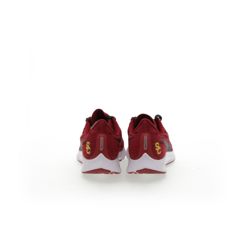 <!-- this list order is intentional -->             Nike air zoom pegasus 36 (usc)