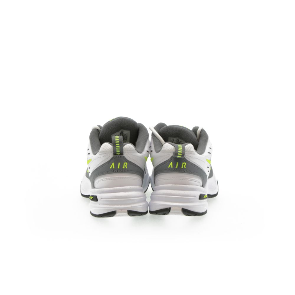 <!-- this list order is intentional -->             Air monarch iv