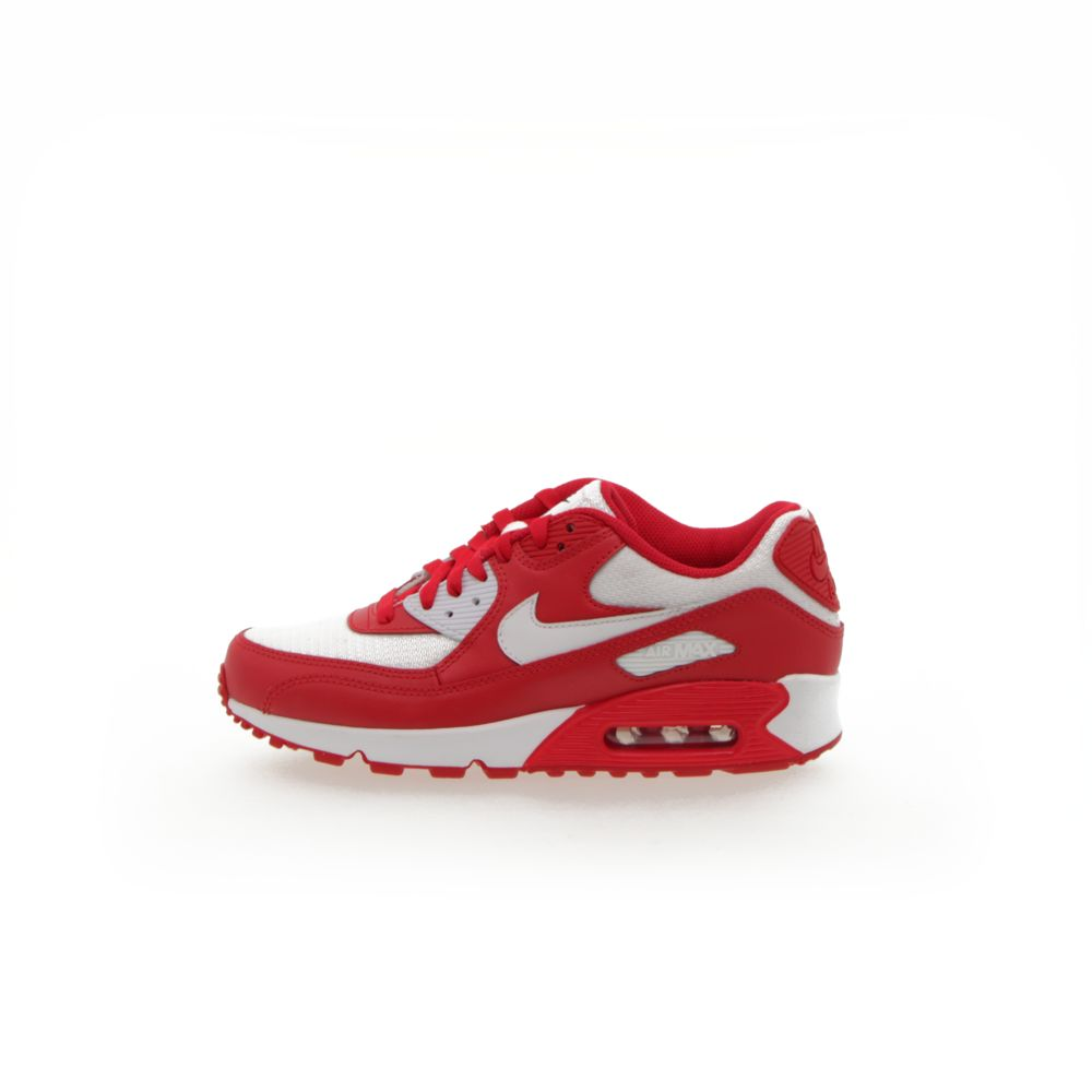 <!-- this list order is intentional -->              air max 90 prm id (ess)