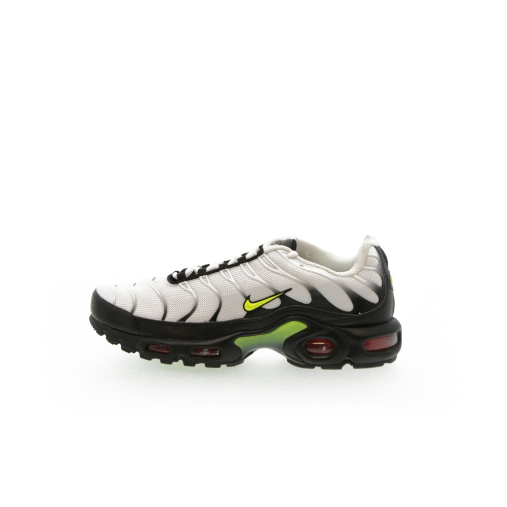 <!-- this list order is intentional -->             Nike air max plus se