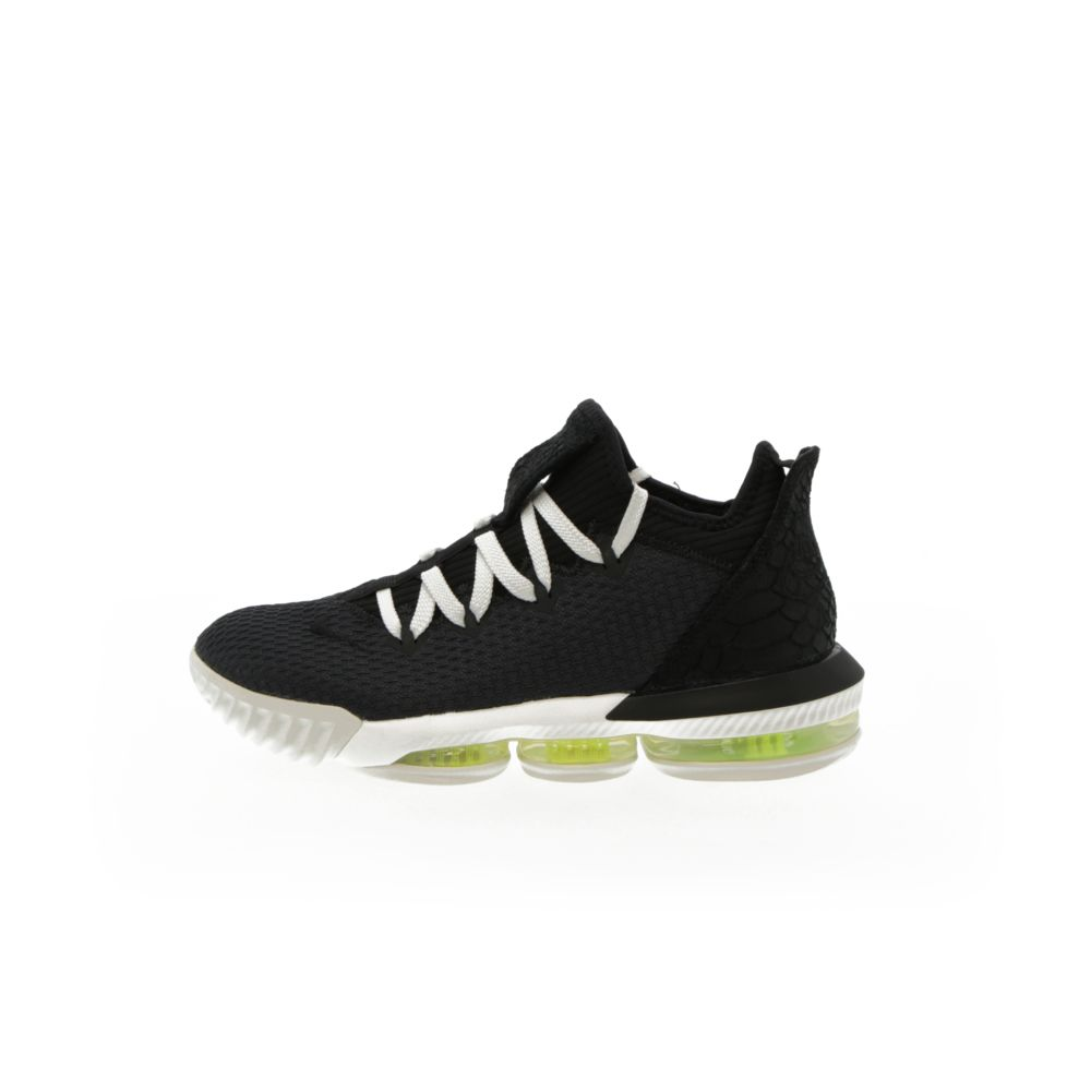 <!-- this list order is intentional -->             Lebron 16 low