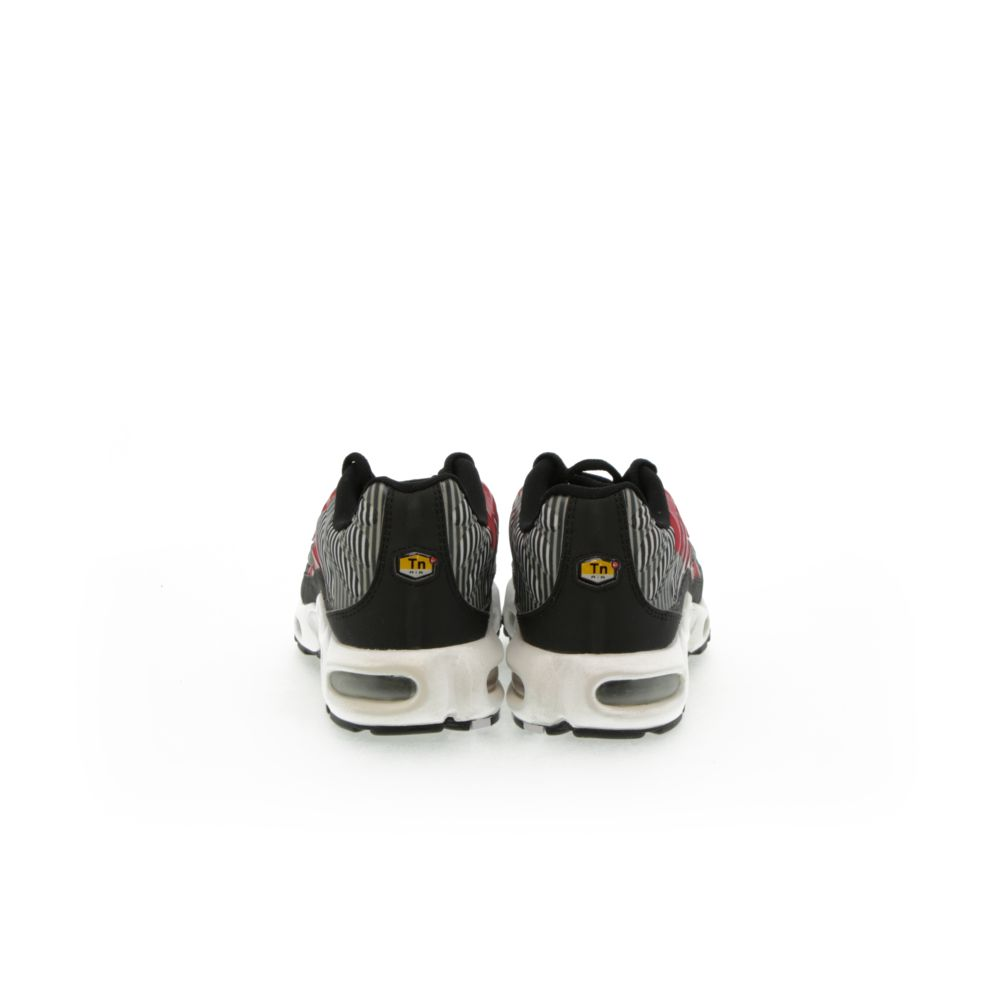 <!-- this list order is intentional -->             Nike air max plus tn se
